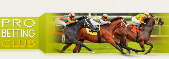professional tipsters horse racing