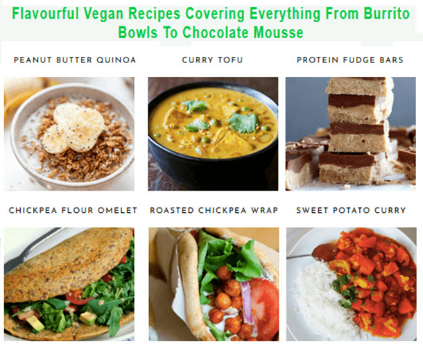 flavourful vegan recipes covering