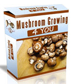 mushroomgrowing