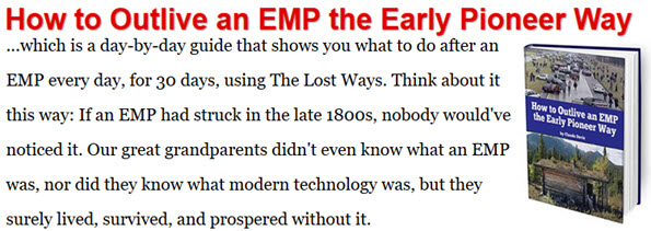 EMP the Early Pioneer Way