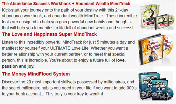 The Abundance Success Workbook